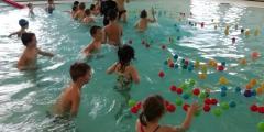 Plavání - Zelená a Fialová třída