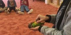Přírodovědný program u Žluťáčků