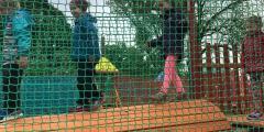 Zeleňáčci v lanáčku
