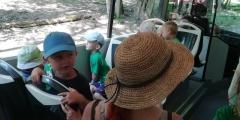 Zeleňáčci v ZOO ve Dvoře Králové