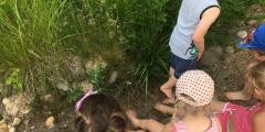 Zeleňáčci ve Fajn parku