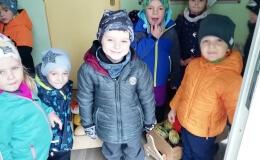 Zeleňáčci zdobí školku mandalami